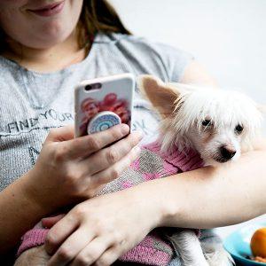 Naisella on kädessä kännykkä ja sylissä koira