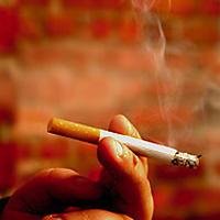Käryävä tupakka.
