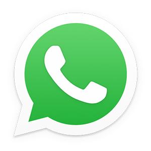 Whatsappin logo.