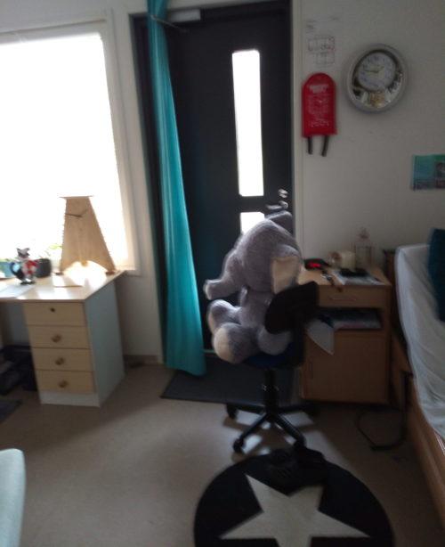 Huone, jossa tuolilla istuu norsupehmolelu.