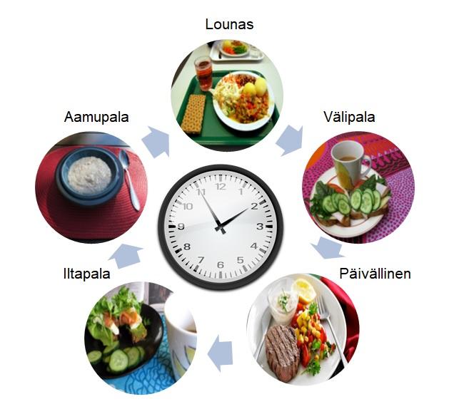 Tässä kuvassa kuvattu ruokailuhetkien rytmi päivässä