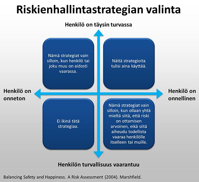 Riskienhallintastrategian valinta